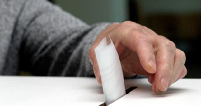 Apklausa: Už kurią partiją balsuosite Seimo rinkimuose 2016?